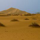 Distant sands by Peter Doré