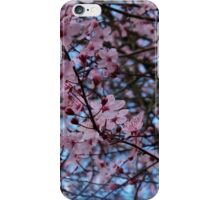 Sakura Blossoms iPhone Case/Skin