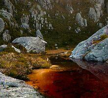 Lake Oberon tannins by bonsta