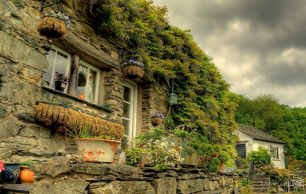 Country Cottage.. by Jamie  Green