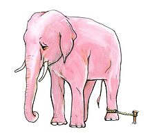 Pink Elephant Tied Up by burntfeather