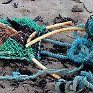 Broken Lobster pot by patjila