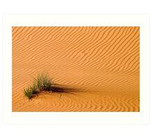 Desert Grass Art Print