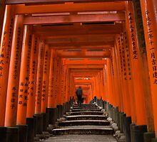 Fushimi Inari Shrine #2 by louise