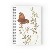 Australian Evening Brown Butterfly Spiral Notebook