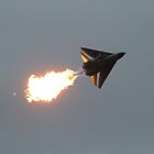 F111 Fighter by jaskel