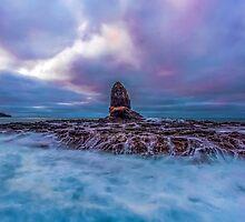 Cape Schanck Sunrise by Jason Cincotta