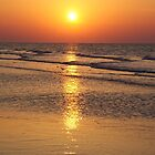 hilton head sunrise by Dannyboy2247