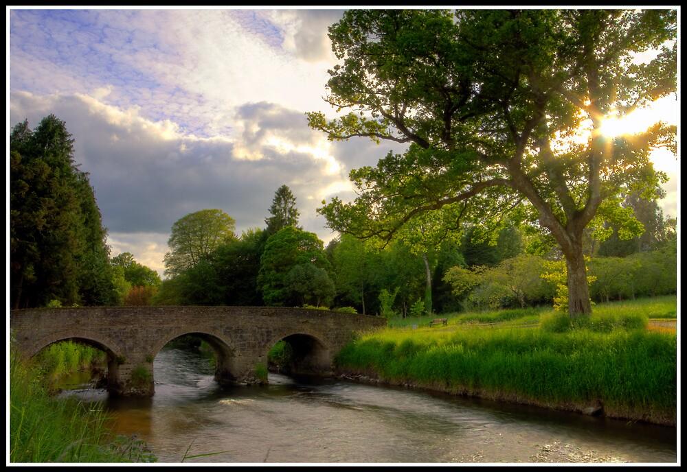 Birr Castle Demesne by Mark Lyons
