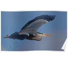 Heron Inflight Poster