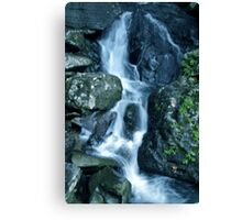 Streaming Canvas Print
