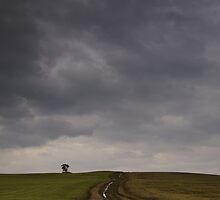 The Path by Gert Doerfler
