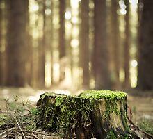 Green by Gert Doerfler