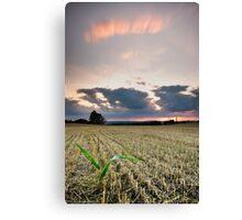 September Sunset Canvas Print