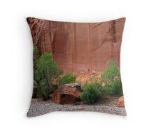 Utah's Red Rock Landscape Throw Pillow