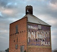 House of Pills by Jim Worrall