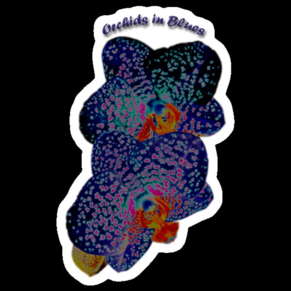 Orchids in Blues by Nira Dabush