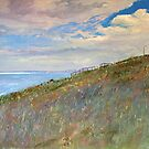 Park Bench Foreshore - Hallett Cove, SA by Pieter  Zaadstra
