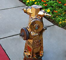 Bronzed Hydrant by Clyde  Smith