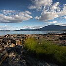 on the rocks by Bill vander Sluys