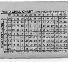 Cold Chillin' by xcrazyfun