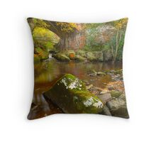Eller Beck, Beck Hole, North Yorkshire Moors Throw Pillow