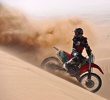 Dune Spray by Cheryl Westerdale