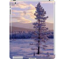 Landscape in winter iPad Case/Skin