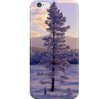 Landscape in winter iPhone Case/Skin