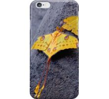 A PAIR OF COMET MOTHS iPhone Case/Skin