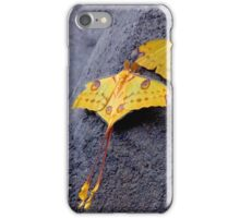 A PAIR OF COMET MOTHS iPhone Case/Skin