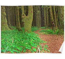 Neptune Beach Forest...Yachats, Oregon Poster