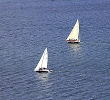The Race Is On by HALIFAXPHOTO