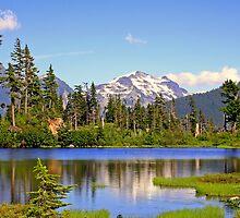 """""""North Cascades Spring"""" by Lynn Bawden"""