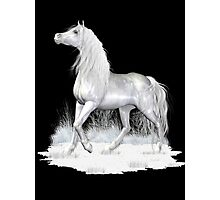 Mystical White Horse .. tee shirt Photographic Print