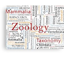 Mammals In Typography Metal Print