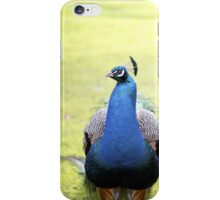 peacock... iPhone Case/Skin