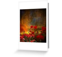Phil's Poppies Greeting Card