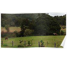 Farm Poster
