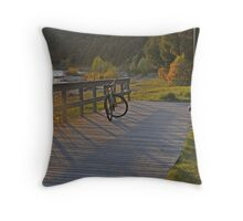 A beautiful ride... Throw Pillow