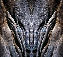 Natures faces #12 by angelena rebori