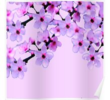 Cherry Blossom- In Memory  Poster