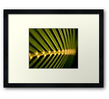 Palm Fronds - horizontal Framed Print
