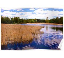 Christie Wetlands_1 Poster