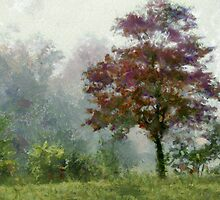 Tree In Lifting Fog by Jean Gregory  Evans