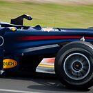 Sebastian Vettel by T-Pot