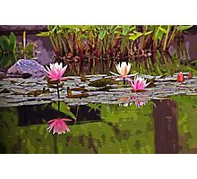 Pond of Dreams Photographic Print