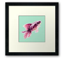 Magneta Fish on Mint  Framed Print
