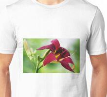 Daylily (Ruby Spider) Unisex T-Shirt