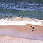 Boy Wading at Sorrento Back Beach by rubylily